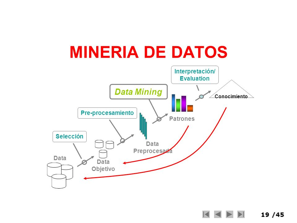 MINERIA DE DATOS Data Mining Interpretación/ Evaluation