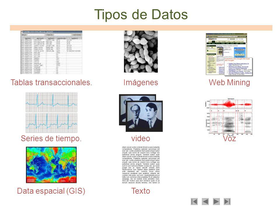 Tipos de Datos Tablas transaccionales. Imágenes Web Mining