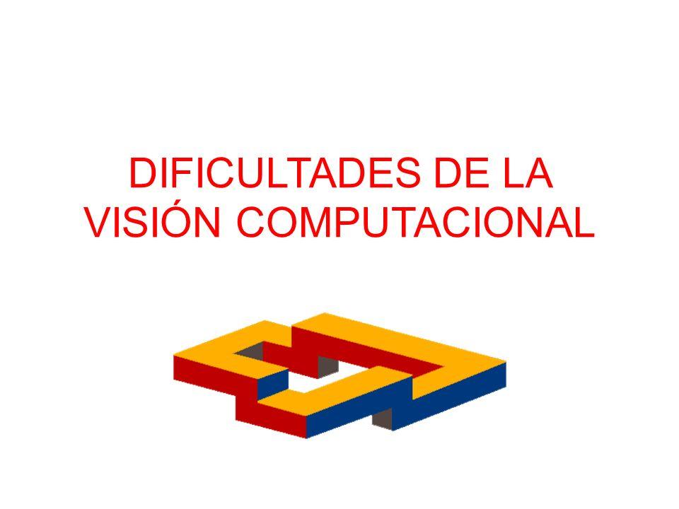 DIFICULTADES DE LA VISIÓN COMPUTACIONAL