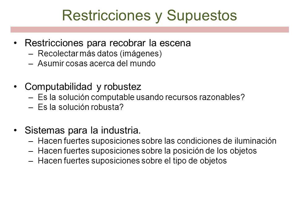 Restricciones y Supuestos
