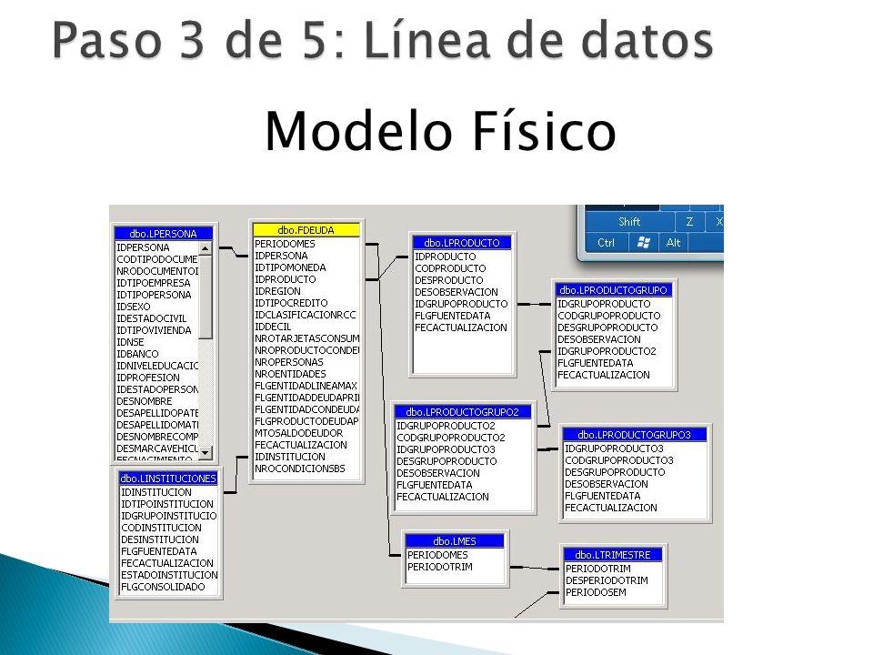 Paso 3 de 5: Línea de datos Modelo Físico