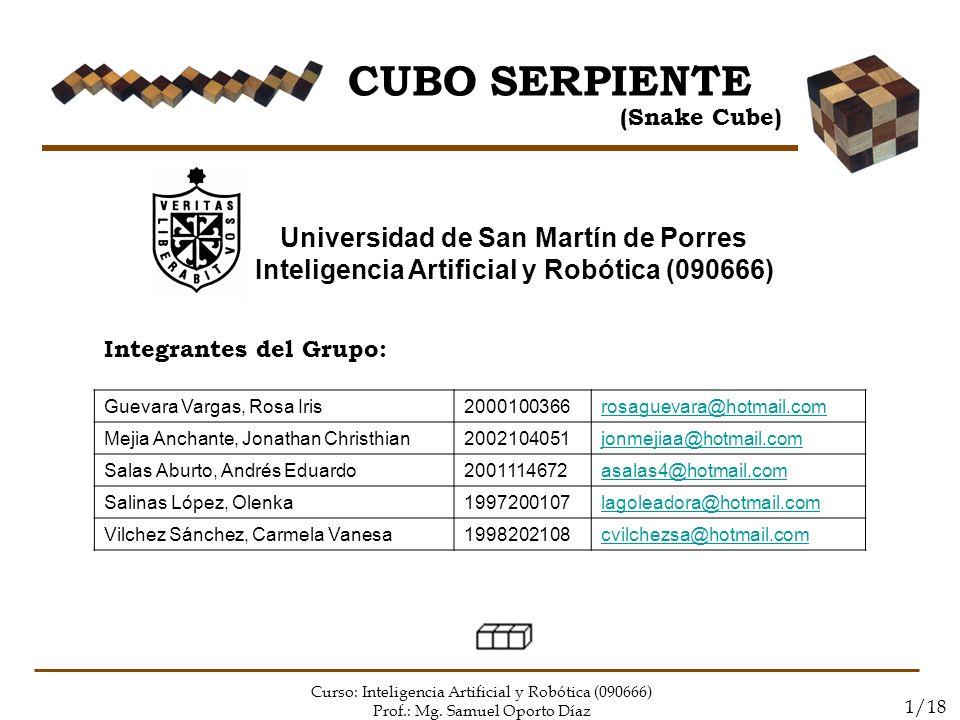CUBO SERPIENTE Universidad de San Martín de Porres