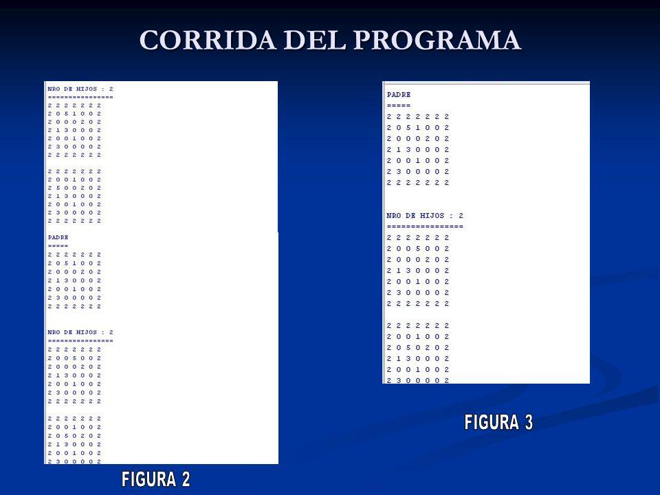 CORRIDA DEL PROGRAMA FIGURA 3 FIGURA 2