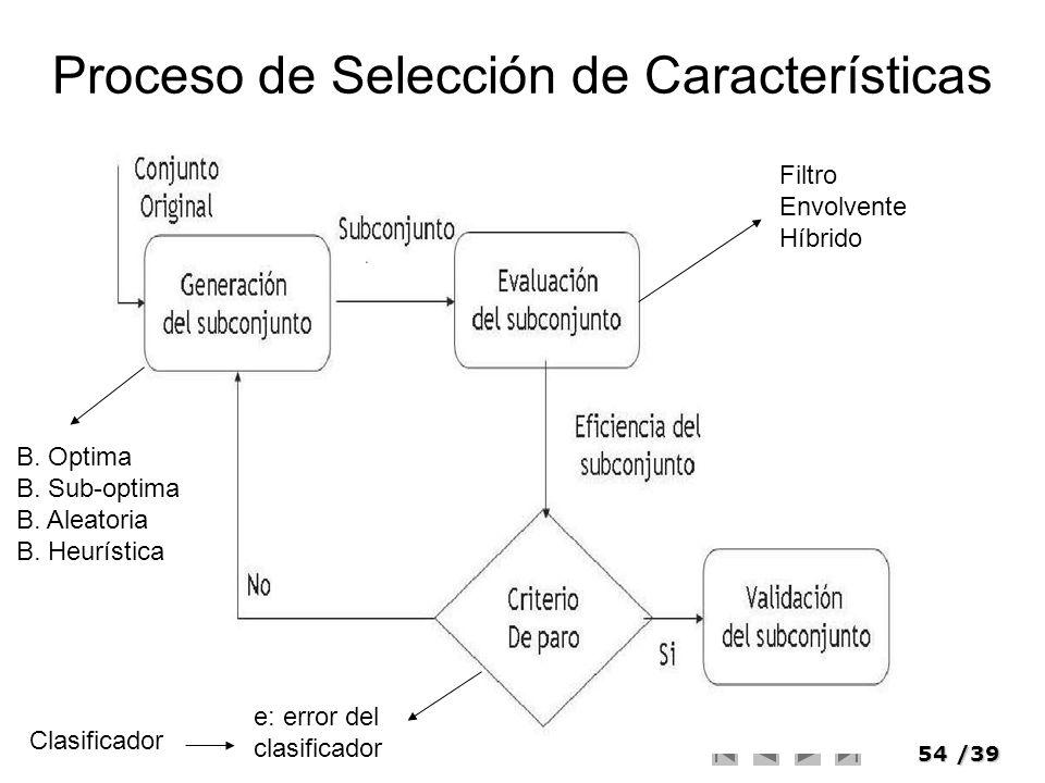 Proceso de Selección de Características