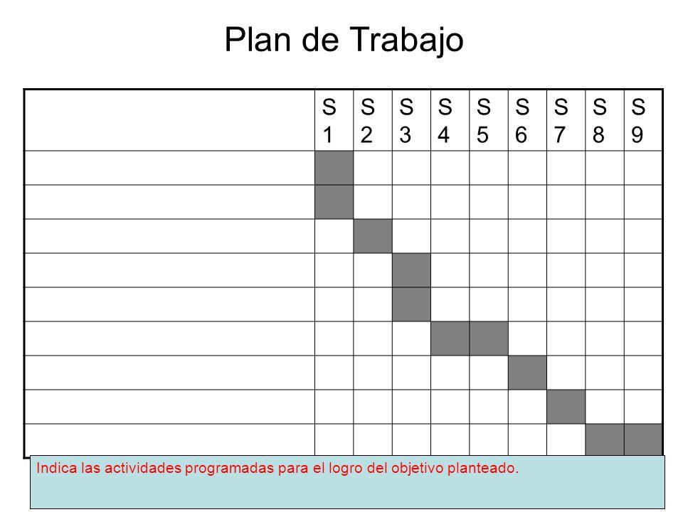 Plan de Trabajo S1 S2 S3 S4 S5 S6 S7 S8 S9