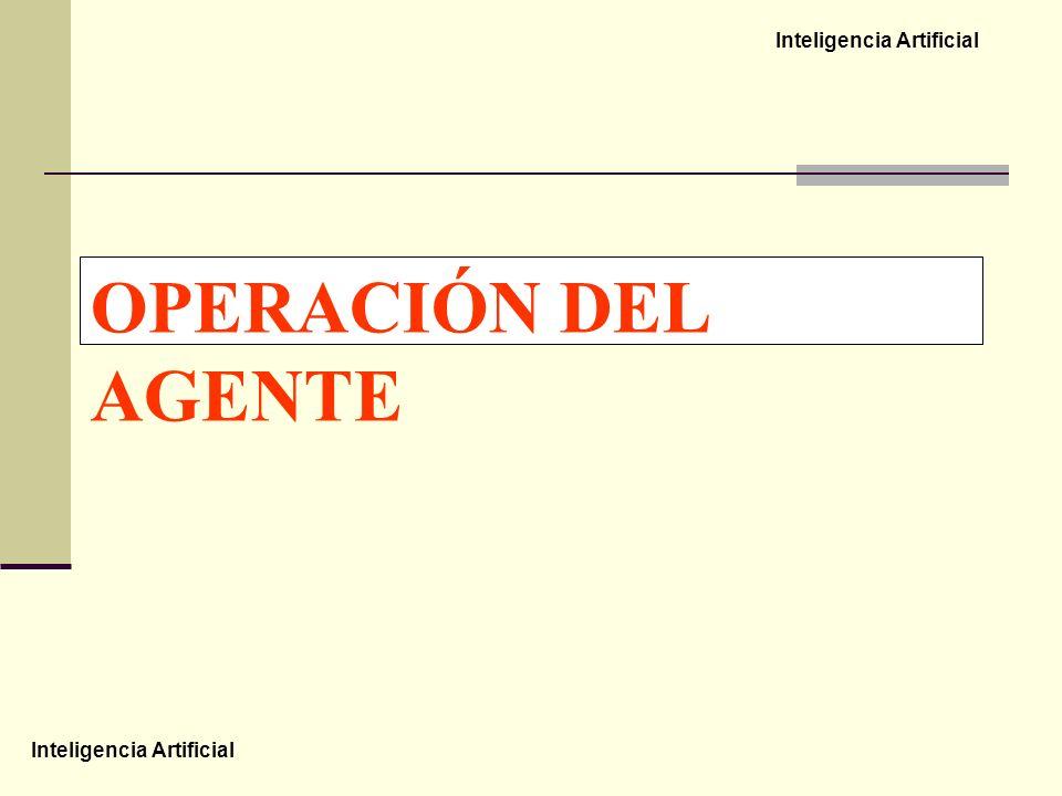 OPERACIÓN DEL AGENTE