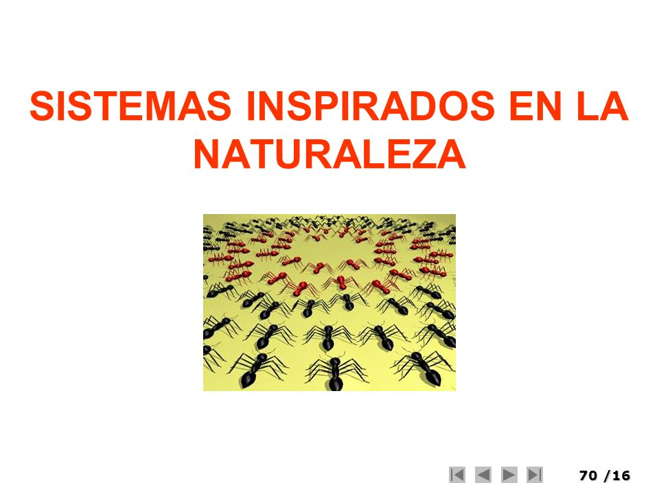 SISTEMAS INSPIRADOS EN LA NATURALEZA