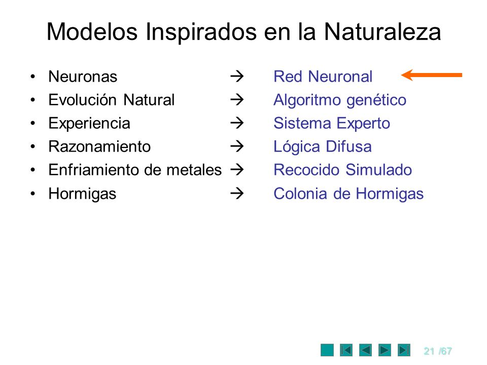 Modelos Inspirados en la Naturaleza