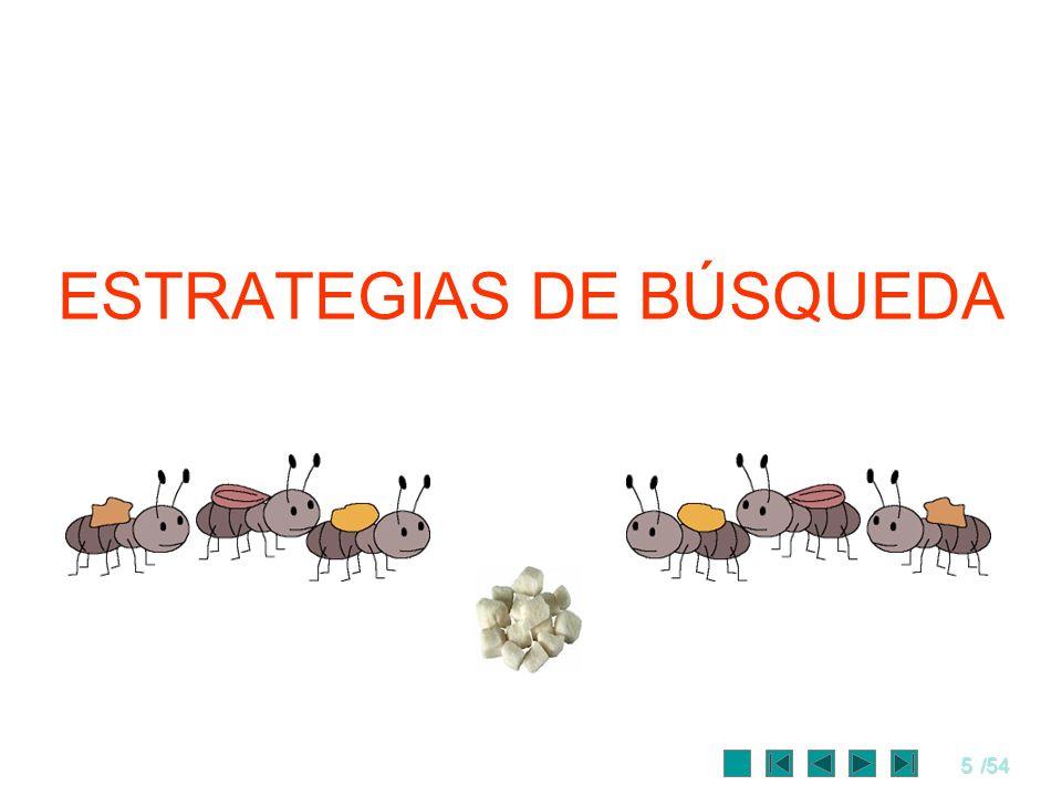 ESTRATEGIAS DE BÚSQUEDA