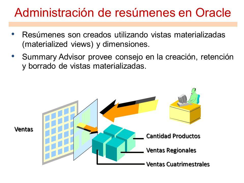 Administración de resúmenes en Oracle