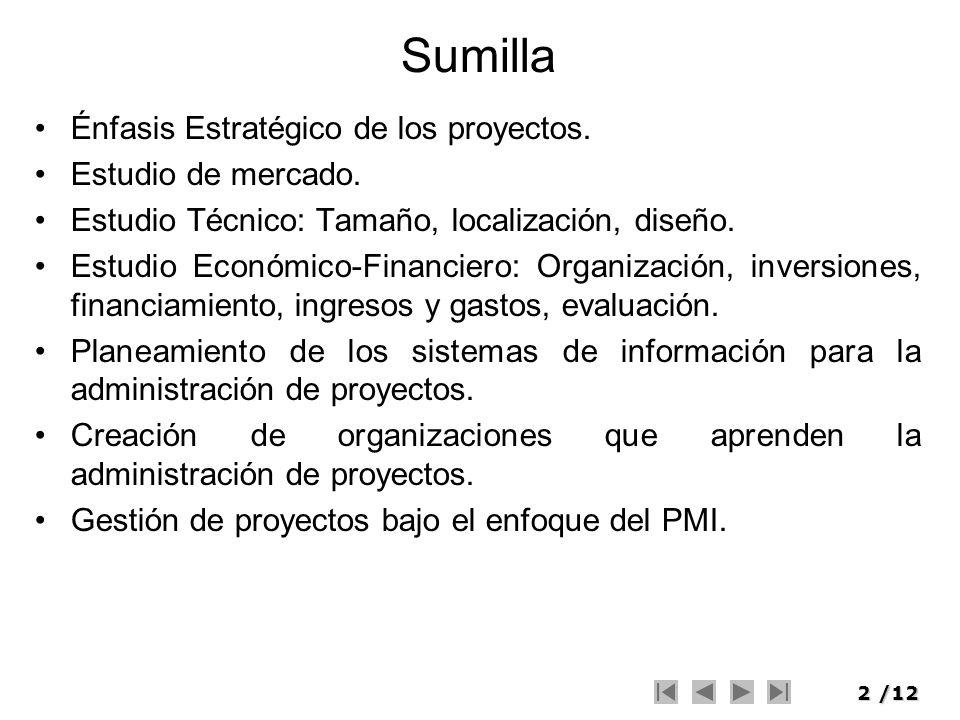 Sumilla Énfasis Estratégico de los proyectos. Estudio de mercado.