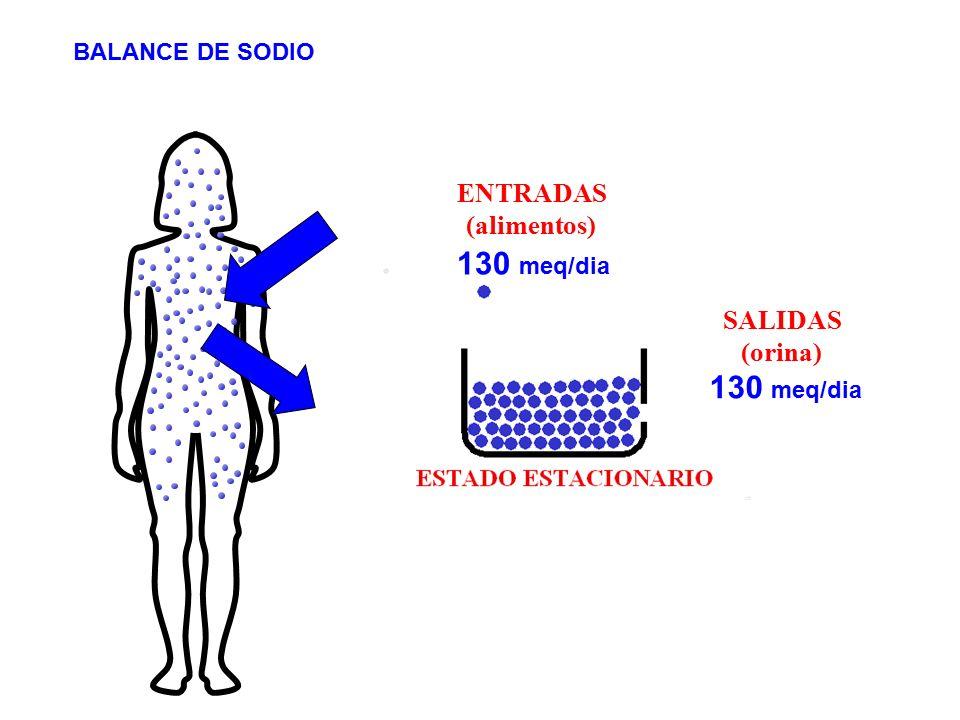 130 meq/dia 130 meq/dia ENTRADAS (alimentos) SALIDAS (orina)