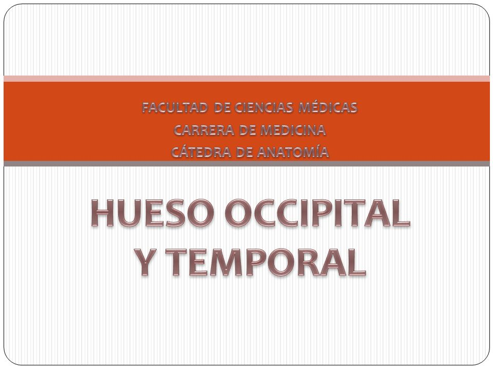 FACULTAD DE CIENCIAS MÉDICAS HUESO OCCIPITAL Y TEMPORAL - ppt video ...