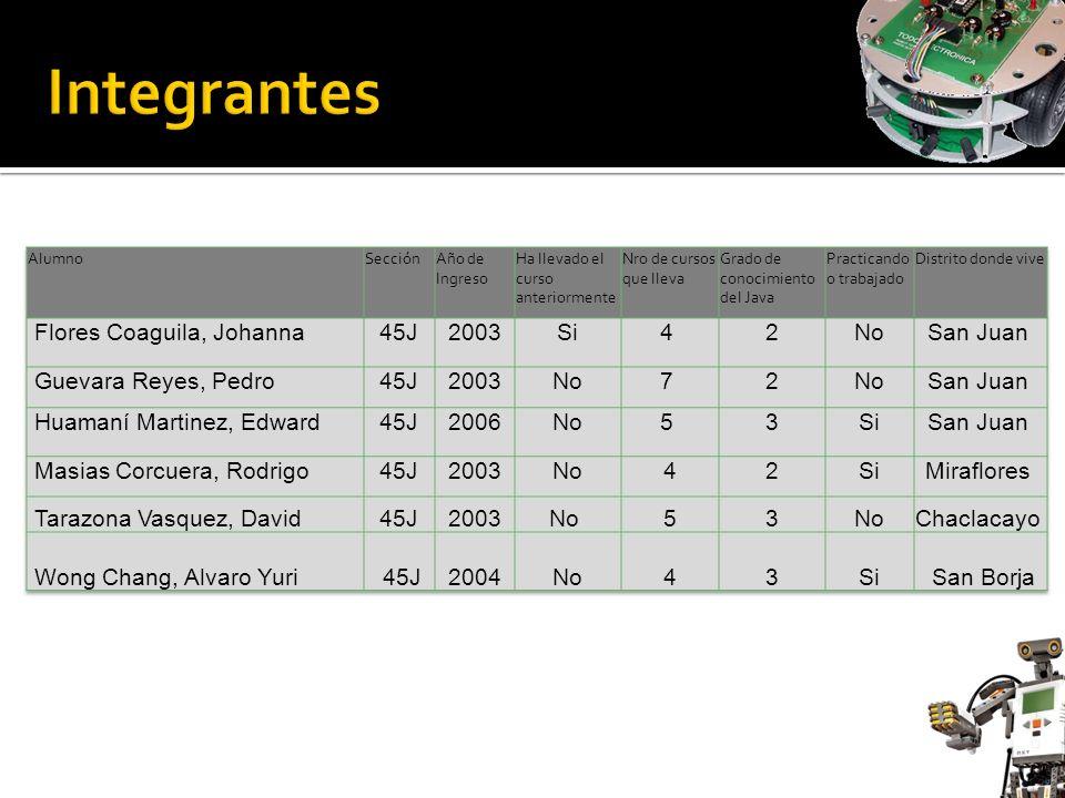 Integrantes Flores Coaguila, Johanna 45J 2003 Si 4 2 No San Juan
