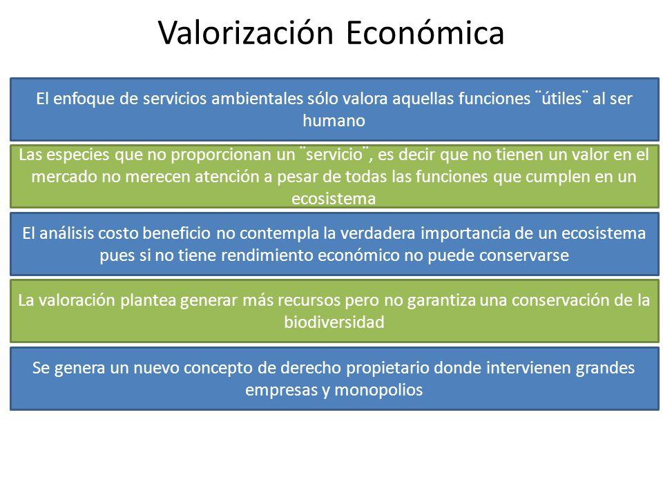 Valorización Económica