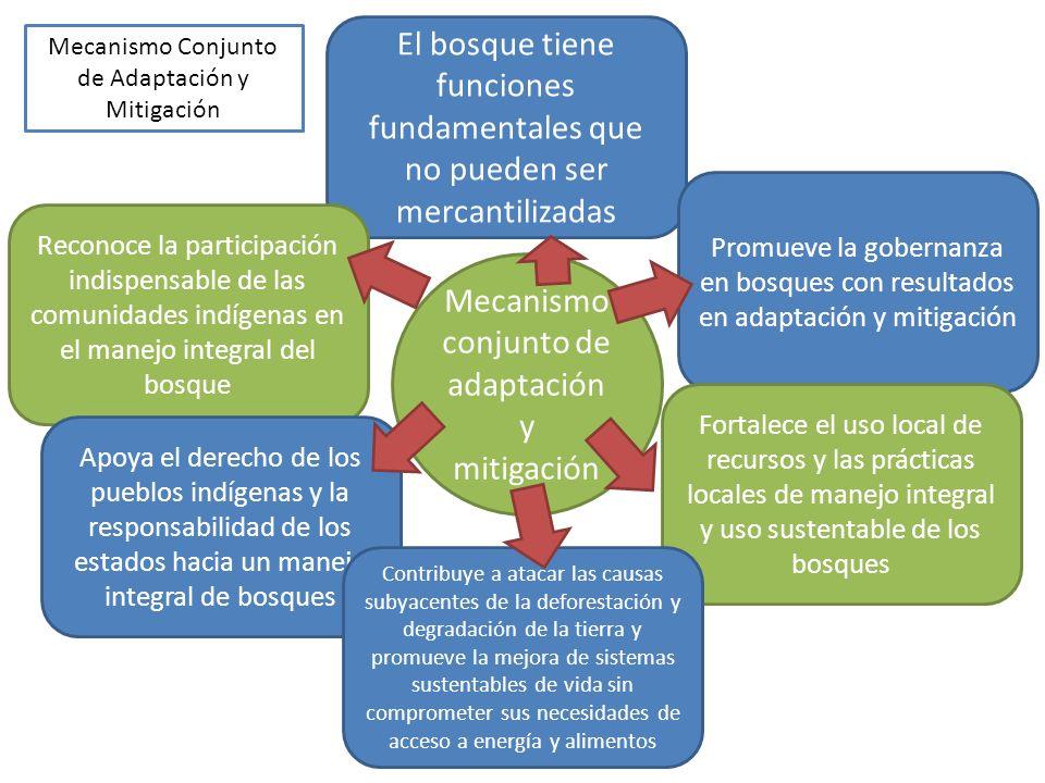 Mecanismo conjunto de adaptación y mitigación