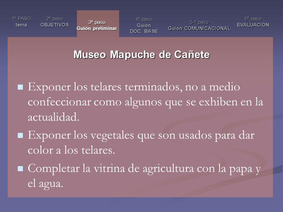 Museo Mapuche de Cañete
