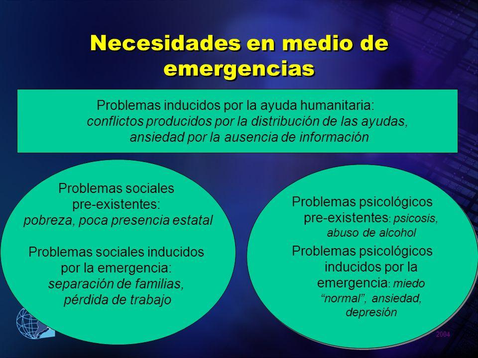 Necesidades en medio de emergencias