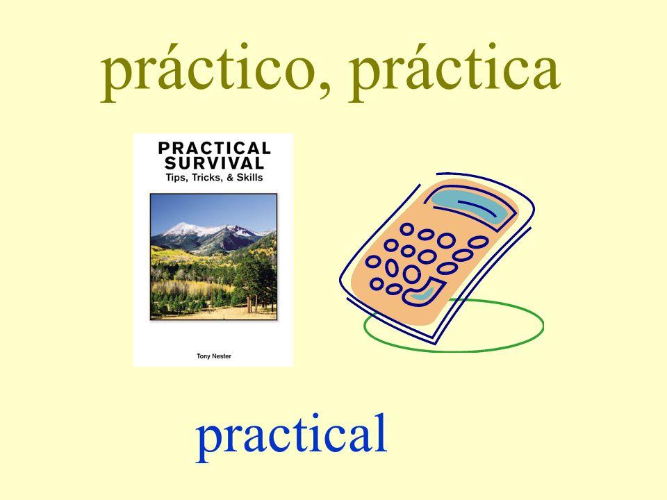 práctico, práctica practical