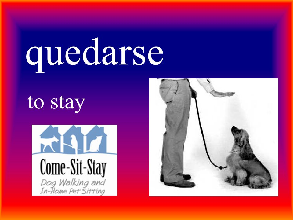 quedarse to stay