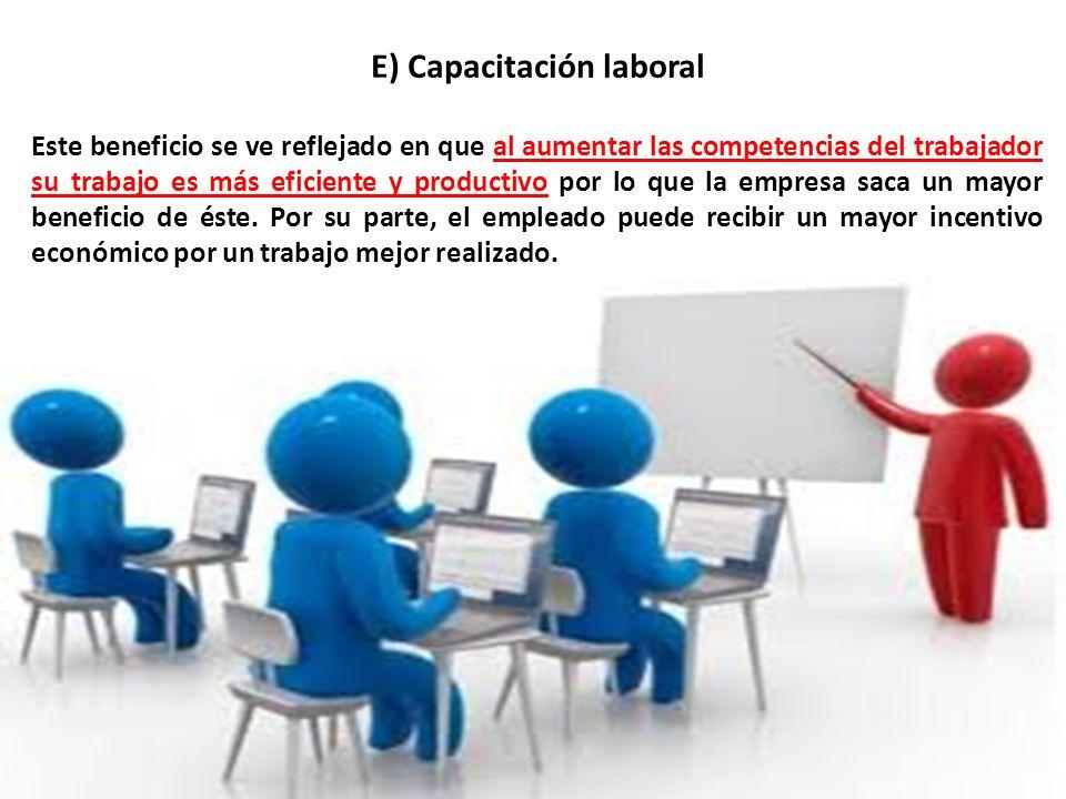 E) Capacitación laboral