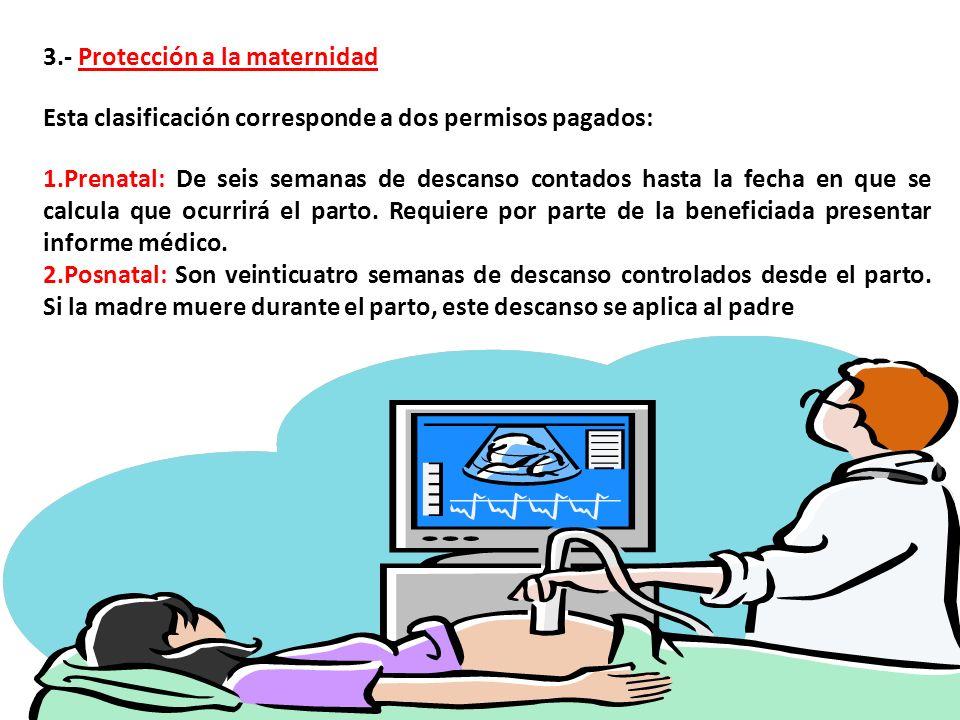 3.- Protección a la maternidad