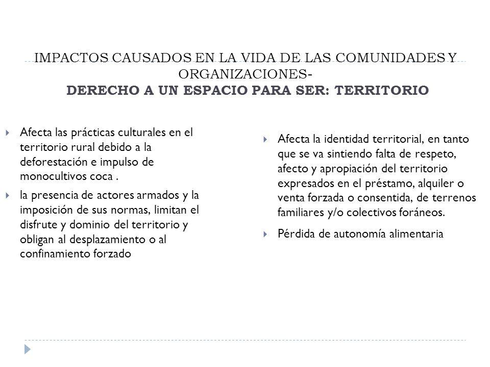 IMPACTOS CAUSADOS EN LA VIDA DE LAS COMUNIDADES Y ORGANIZACIONES- DERECHO A UN ESPACIO PARA SER: TERRITORIO