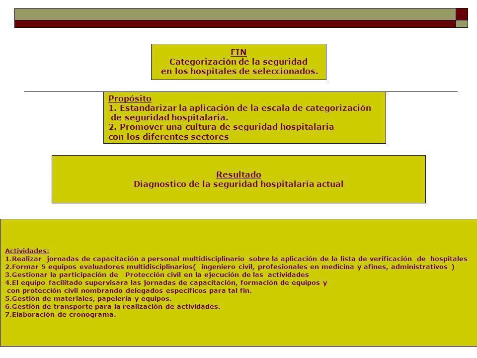 Categorización de la seguridad en los hospitales de seleccionados.