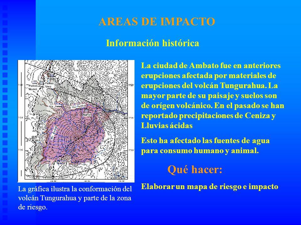 AREAS DE IMPACTO Qué hacer: Información histórica