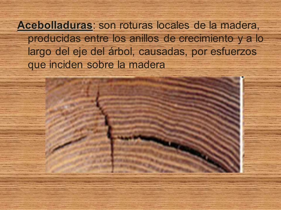 Defectos de la madera ppt video online descargar for Que son las vetas de la madera