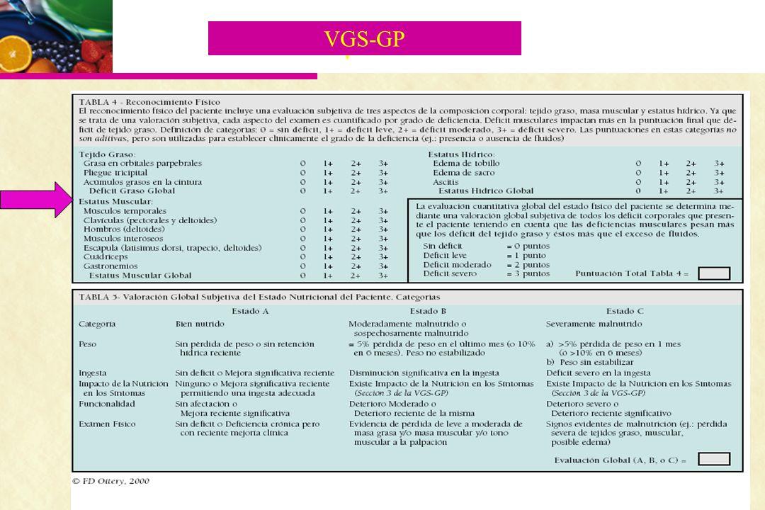 VGS-GP V