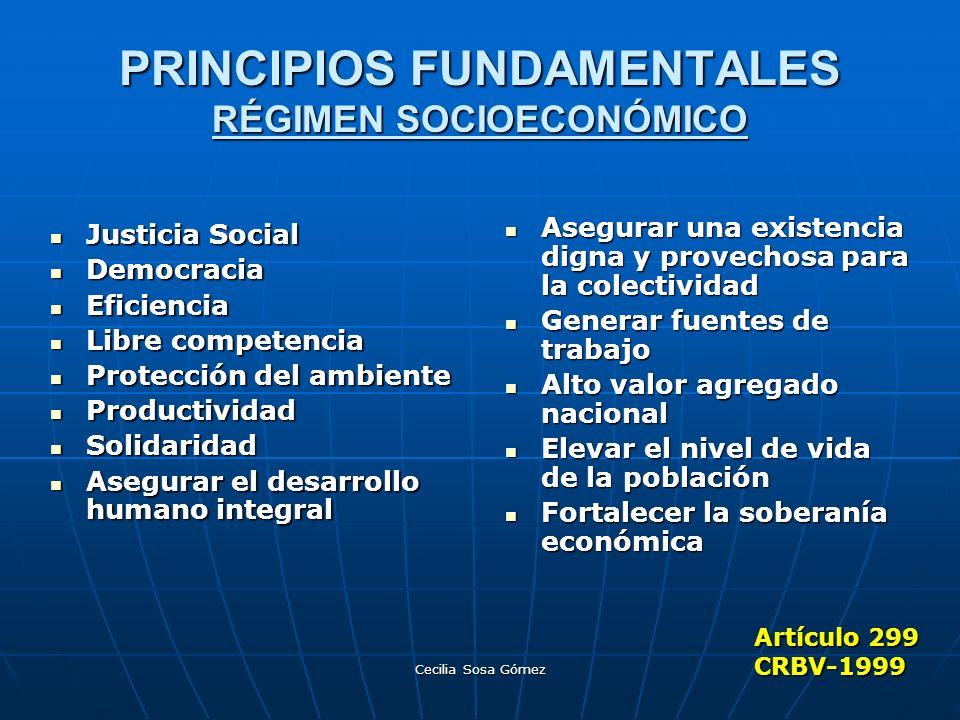 PRINCIPIOS FUNDAMENTALES RÉGIMEN SOCIOECONÓMICO