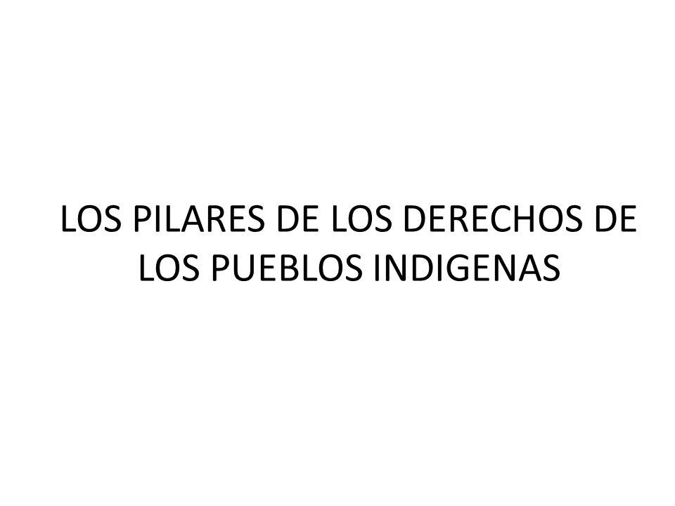 LOS PILARES DE LOS DERECHOS DE LOS PUEBLOS INDIGENAS