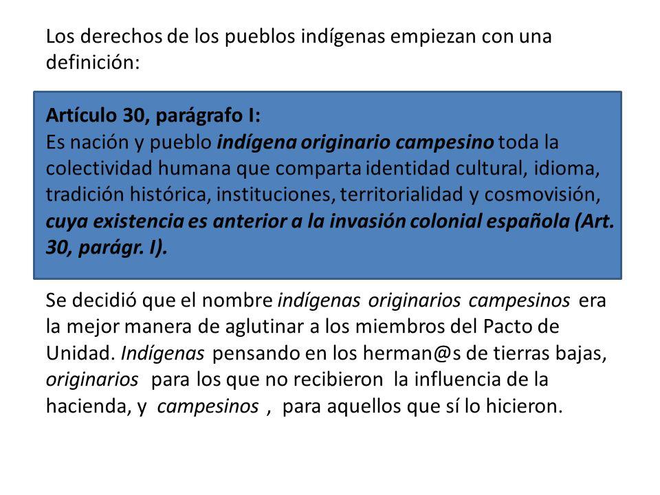 Los derechos de los pueblos indígenas empiezan con una definición: