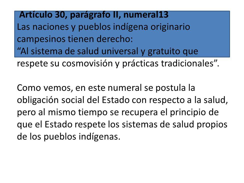 Artículo 30, parágrafo II, numeral13