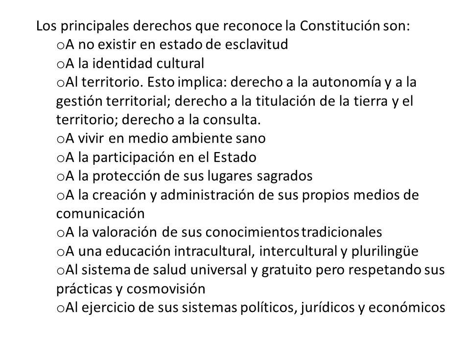 Los principales derechos que reconoce la Constitución son: