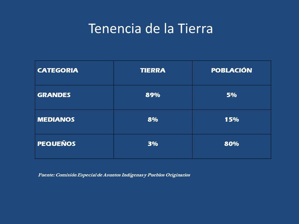 Tenencia de la Tierra CATEGORIA TIERRA POBLACIÓN GRANDES 89% 5%