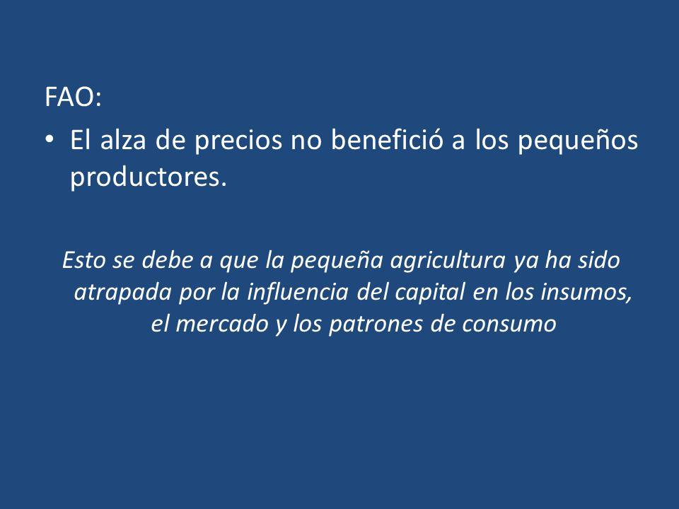 El alza de precios no benefició a los pequeños productores.