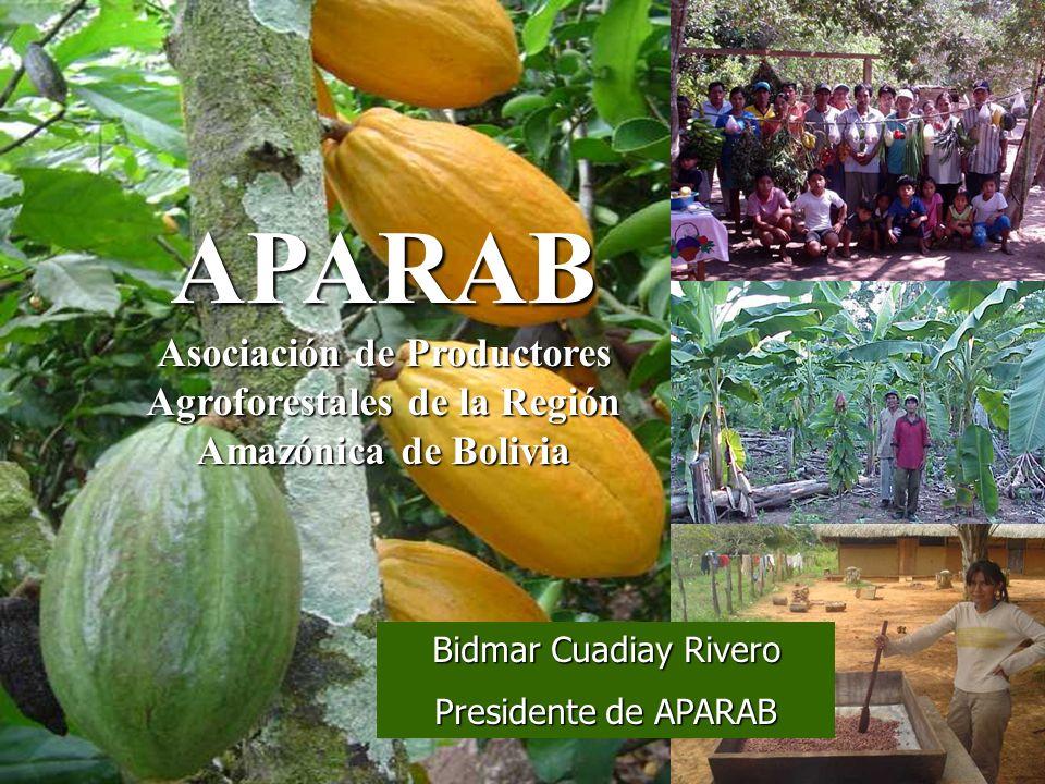 APARAB Asociación de Productores Agroforestales de la Región Amazónica de Bolivia. Bidmar Cuadiay Rivero.