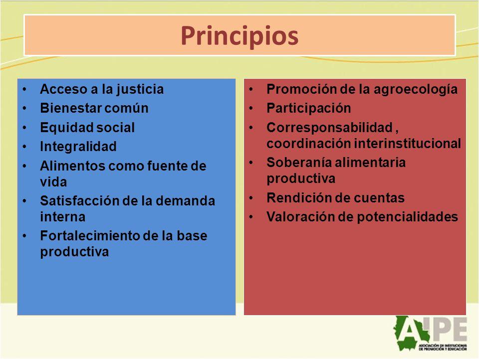 Principios Acceso a la justicia Bienestar común Equidad social