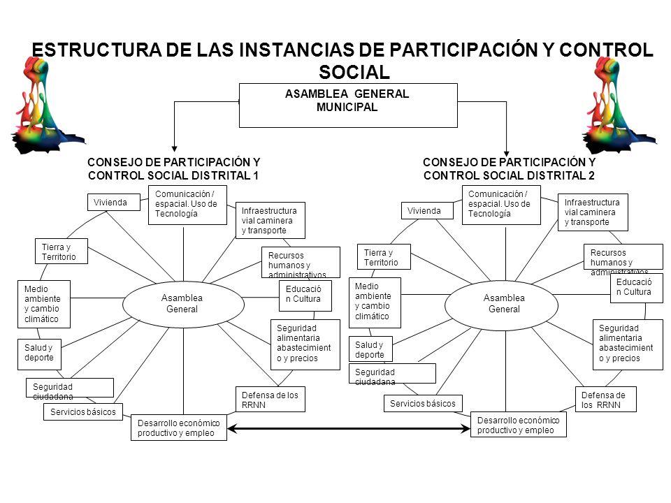 ESTRUCTURA DE LAS INSTANCIAS DE PARTICIPACIÓN Y CONTROL SOCIAL
