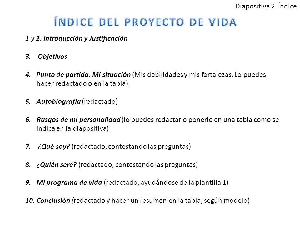 ÍNDICE DEL PROYECTO DE VIDA