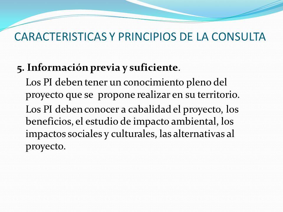 CARACTERISTICAS Y PRINCIPIOS DE LA CONSULTA