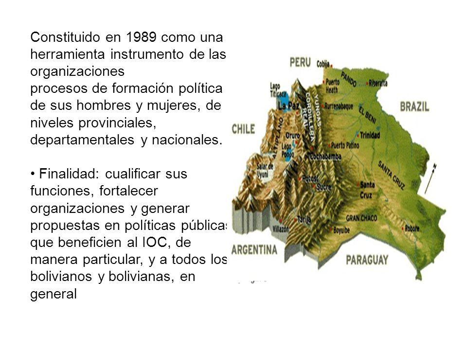 Constituido en 1989 como una herramienta instrumento de las organizaciones