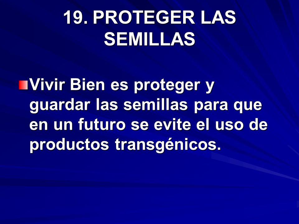 19. PROTEGER LAS SEMILLAS Vivir Bien es proteger y guardar las semillas para que en un futuro se evite el uso de productos transgénicos.