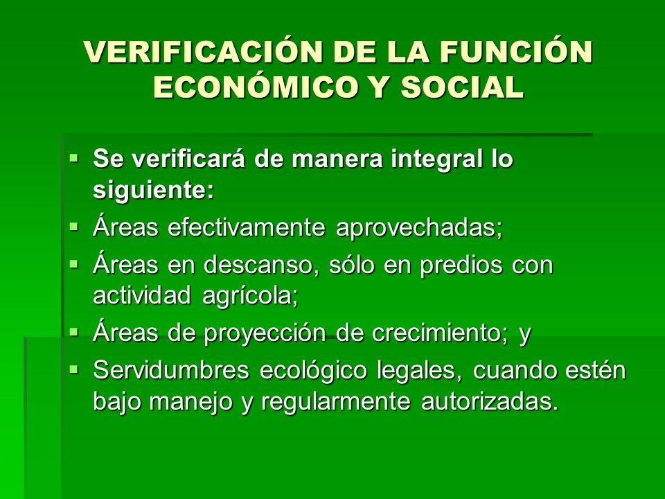 VERIFICACIÓN DE LA FUNCIÓN ECONÓMICO Y SOCIAL