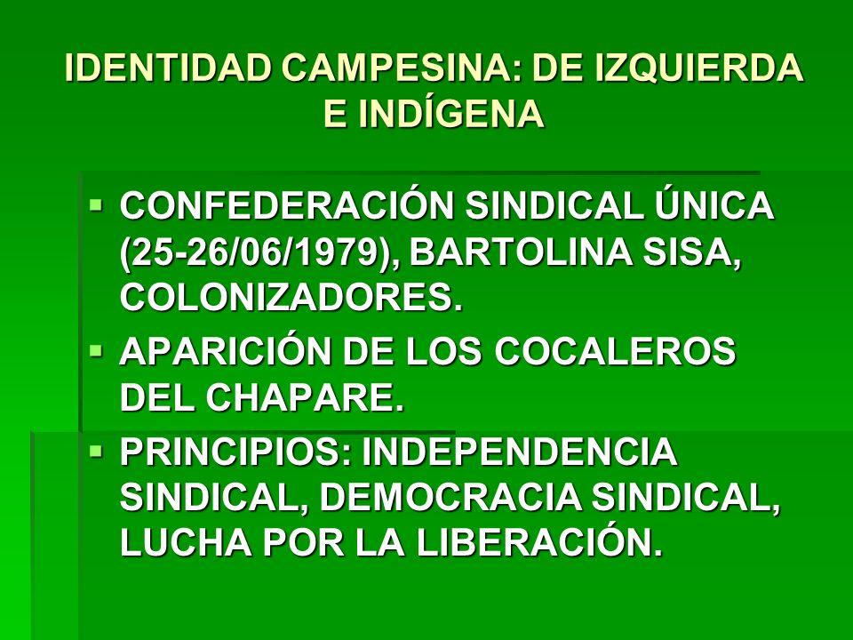 IDENTIDAD CAMPESINA: DE IZQUIERDA E INDÍGENA