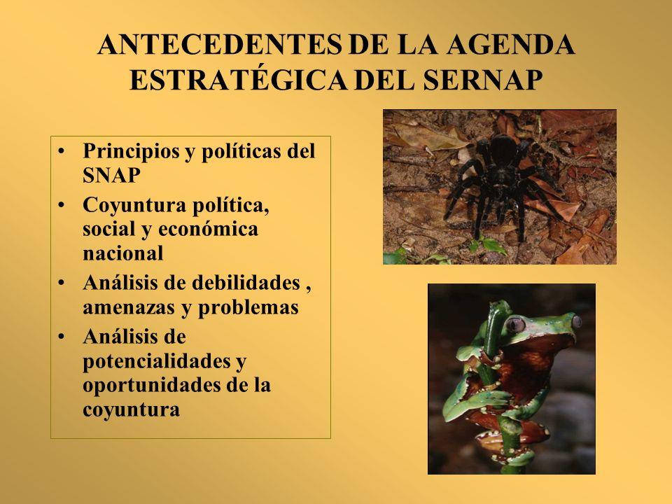 ANTECEDENTES DE LA AGENDA ESTRATÉGICA DEL SERNAP