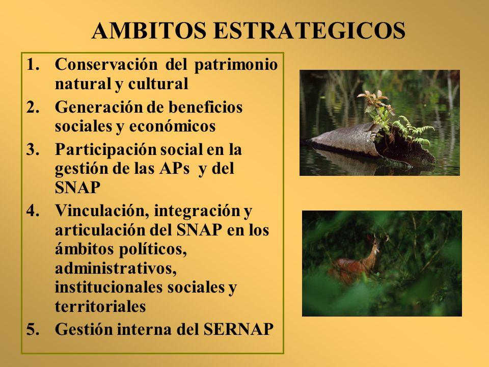 AMBITOS ESTRATEGICOS Conservación del patrimonio natural y cultural