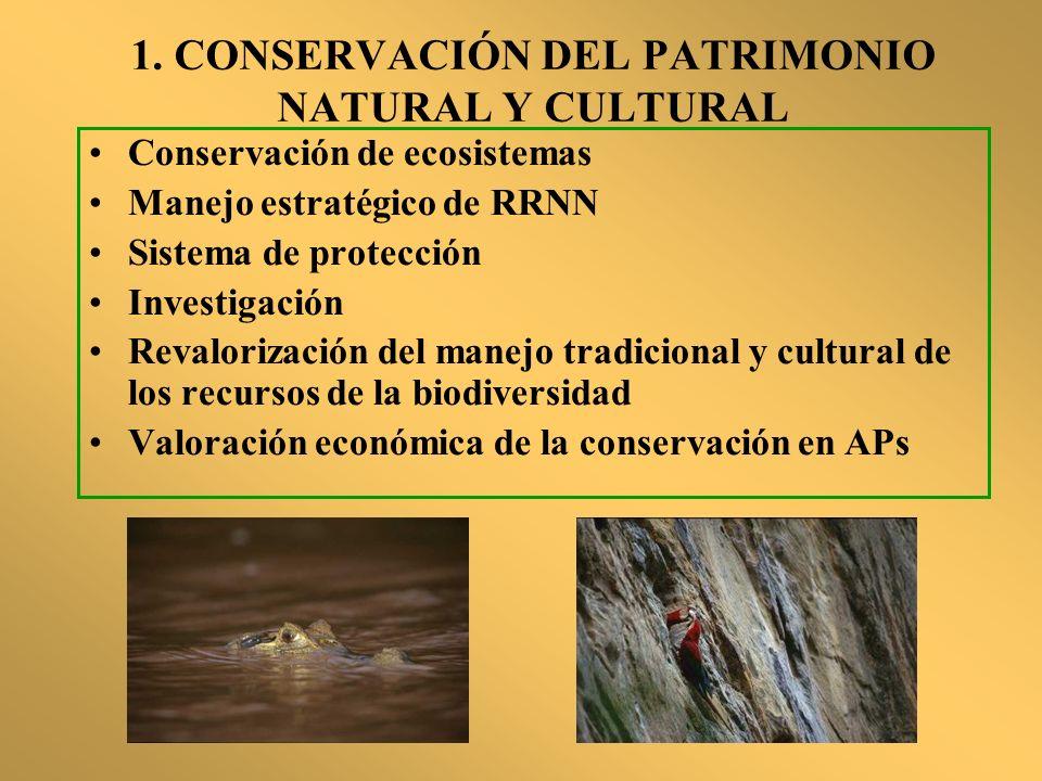 1. CONSERVACIÓN DEL PATRIMONIO NATURAL Y CULTURAL
